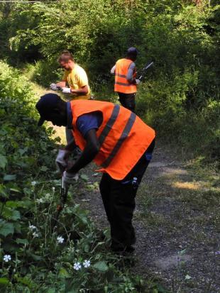 Migranti e volontari all'opera